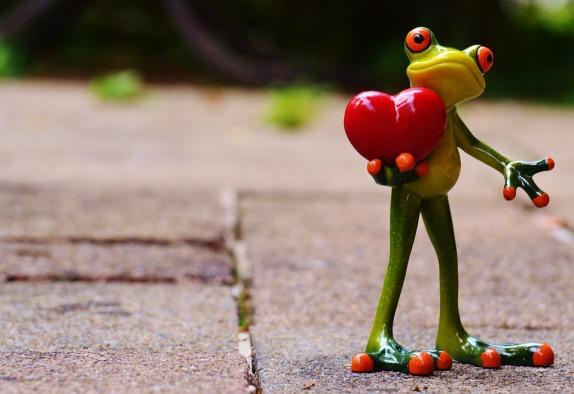 love-903163_960_720.jpg