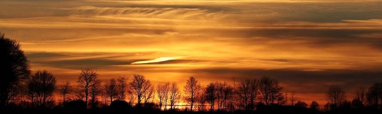 sunset-2021266_960_720.jpg